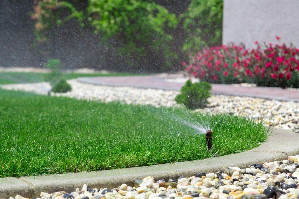 backyard with sprinkler
